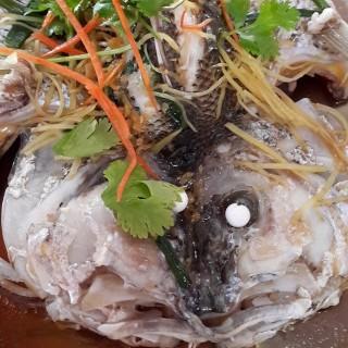 Steamed Fish - Kuala Selangor's Restoran Kuan Hwa Kuala Selangor (Kuala Selangor)|Klang Valley