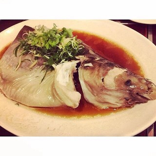 Steamed Patin Fish -  Tropicana / 粵朝海鮮酒家 (Tropicana)|Klang Valley